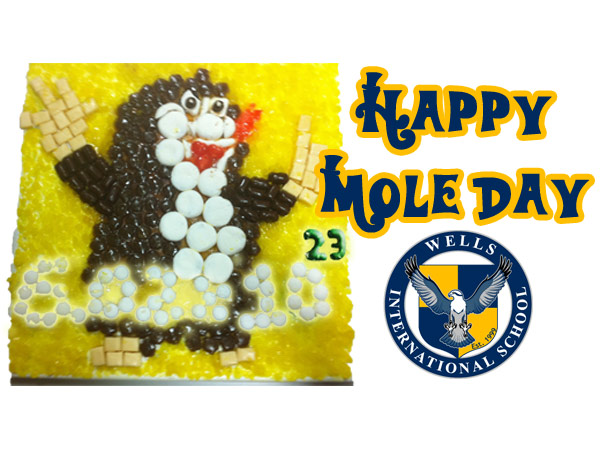 Wells International Mole Day