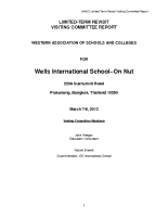 2013 WIS VC Report