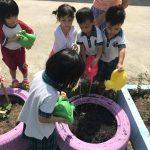 Students farming