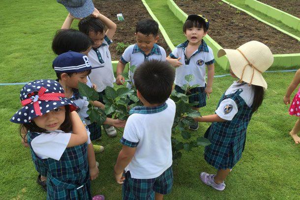 Bangna Garden
