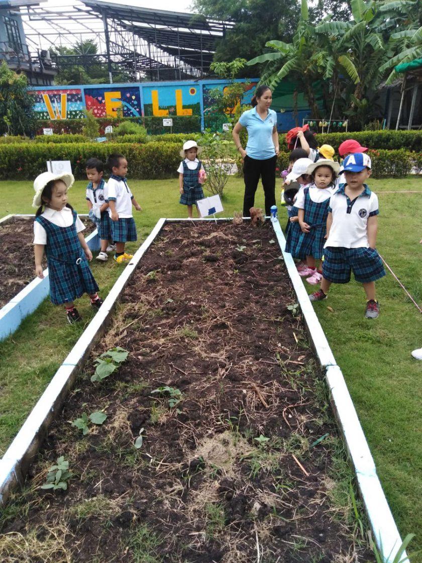 Outdoor Education at Wells Bang Na