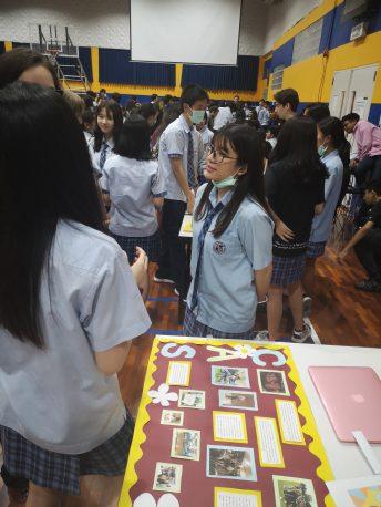IB CAS Showcase